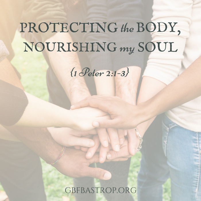 Protecting the Body, Nourishing My Soul {1 Peter 2:1-3} — a sermon by Reg Larkin, Grace Bible Fellowship, Bastrop TX